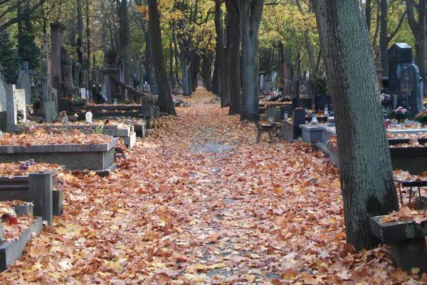 Cmentarz Powazki 2018